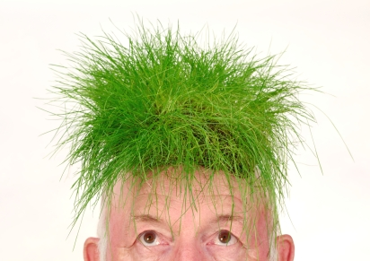 Grass on an old mans head