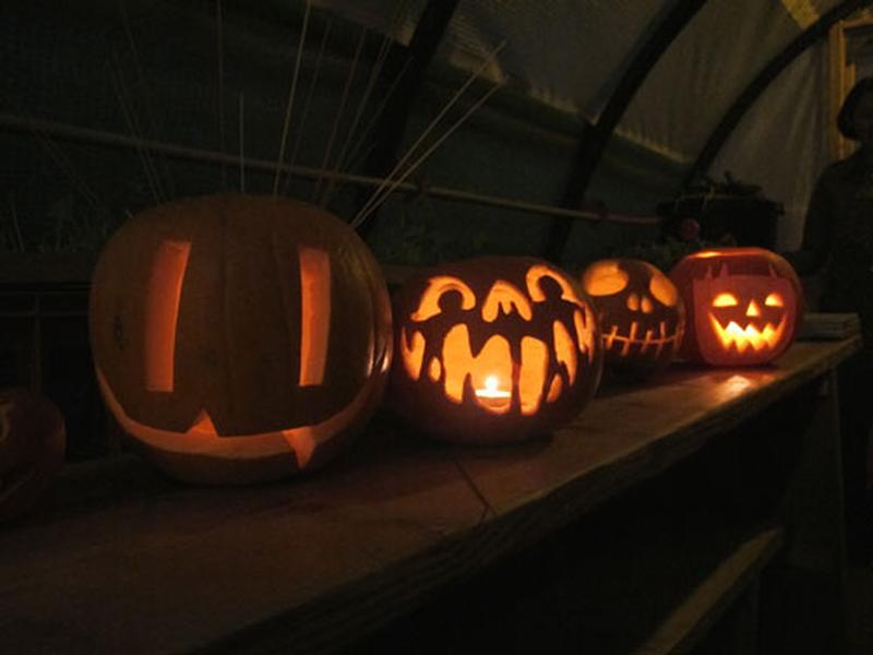 Pumpkins at Kings Cross