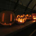 Pumpkins-at-Kings-Cross featured