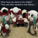 Knitivity Dec 7th featured