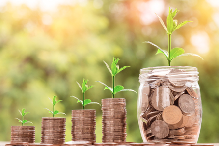 growing your pension pot