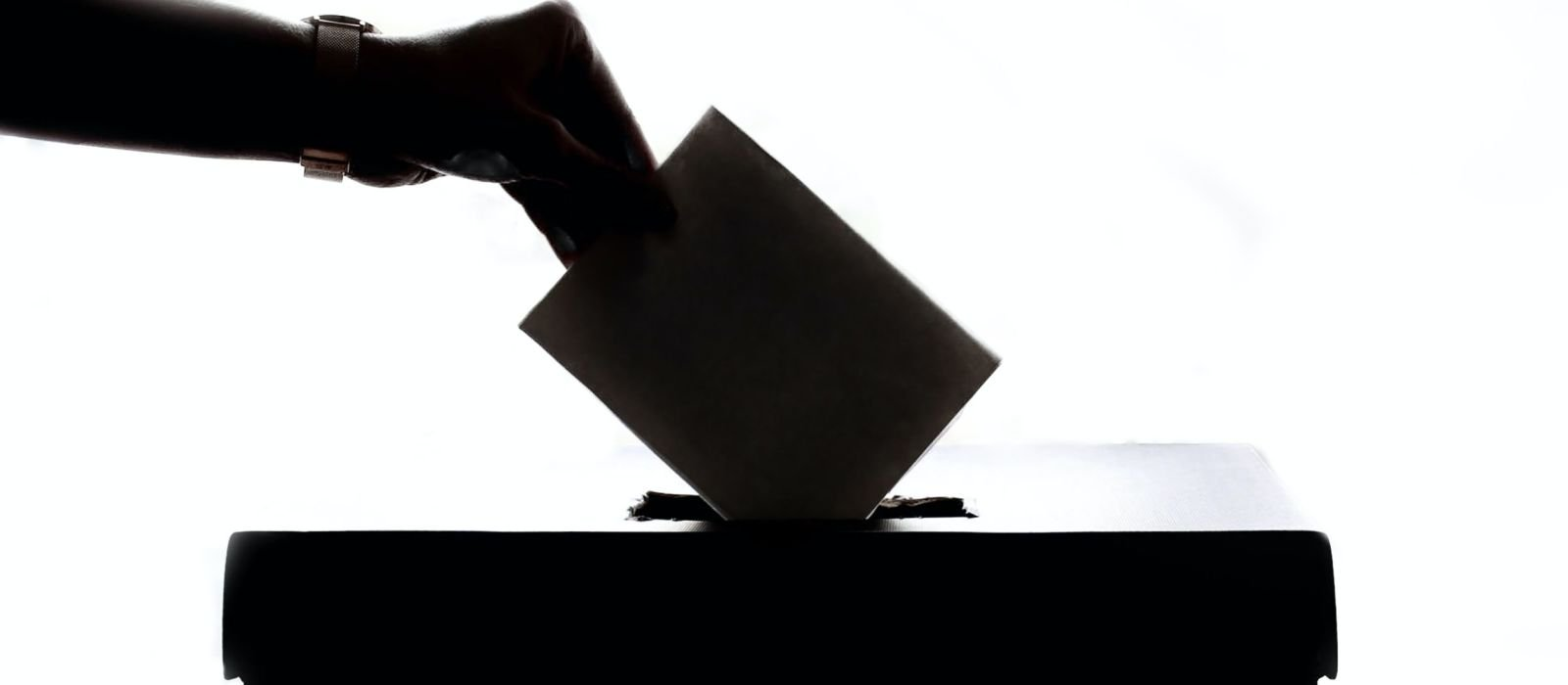 Women Voters, Fawcett society event